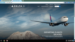 Delta website's page acknowledging the error.