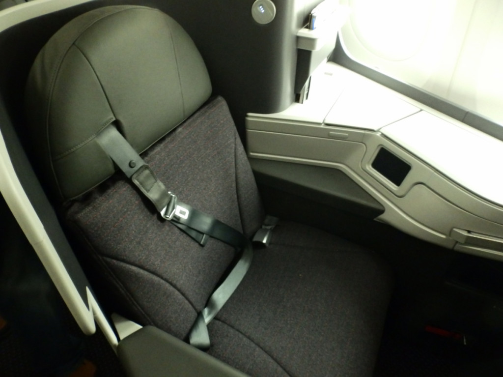 American's 787-9 Business Class seat
